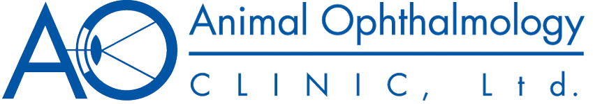 Animal Ophthalmology Clinic | Animal Eye Specialists in Dallas, Texas