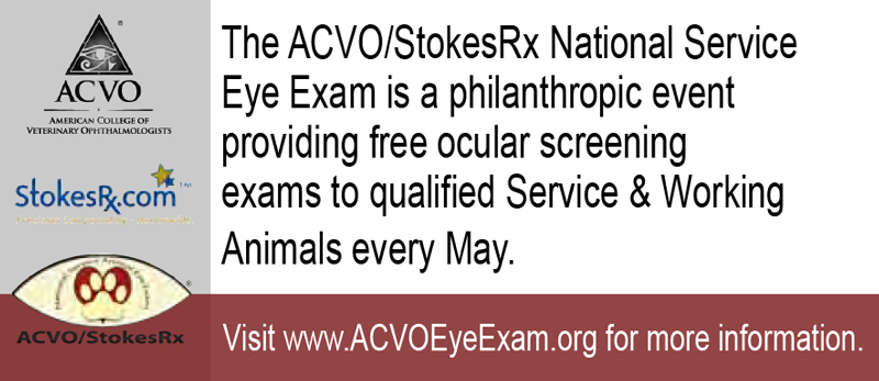 National-service-animal-eye-exam